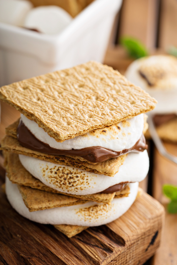 Campfire Worth Grilled S'mores